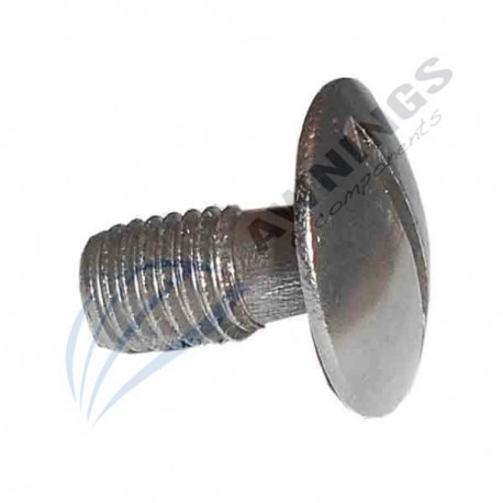 Screw for swimming pool